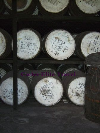 Barresl in the Aging Room