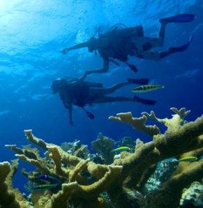 Grand Lido Braco Snorkeling