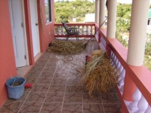 Pile of grass after it dries